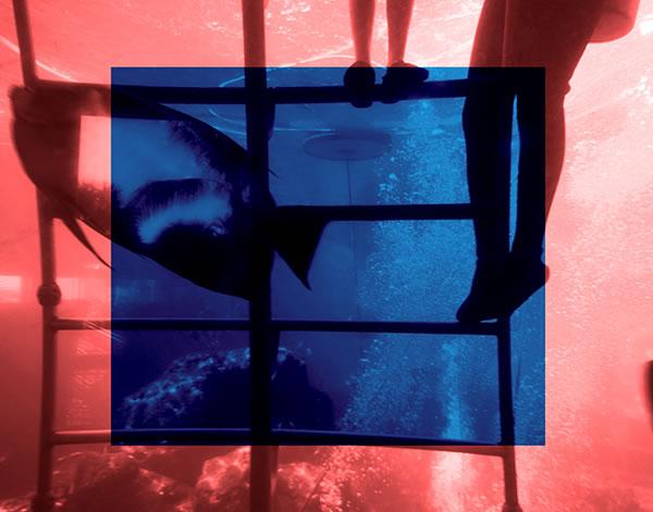 Wet N Wild - Blue